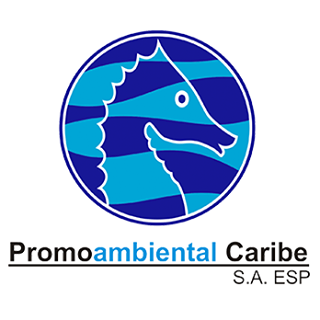 logo pacaribe